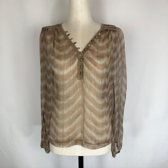 Of Two Minds Sheer Silk Blouse
